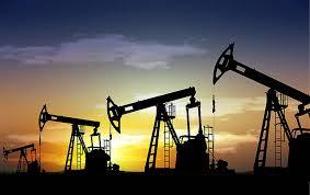 Brasil autoriza 37 empresas de 17 países a participar en licitación petrolera