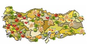 El atractivo mercado de la agricultura en Turquía